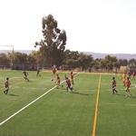 Futebol Newsletter Prancheta 1
