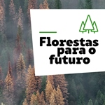 Img Florestas Futuro
