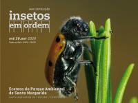 Só até ao final de outubro exposição no Parque Ambiental de Santa Margarida